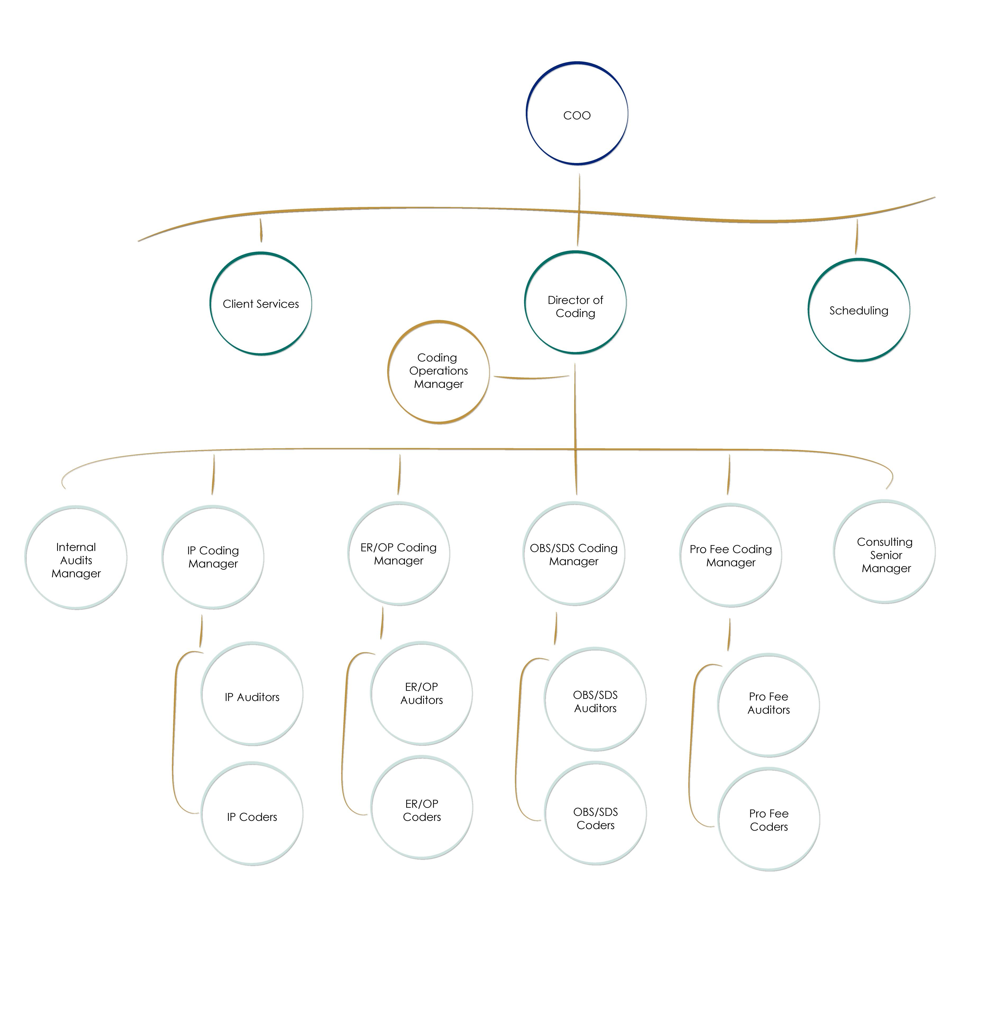 coding-org-chart-website