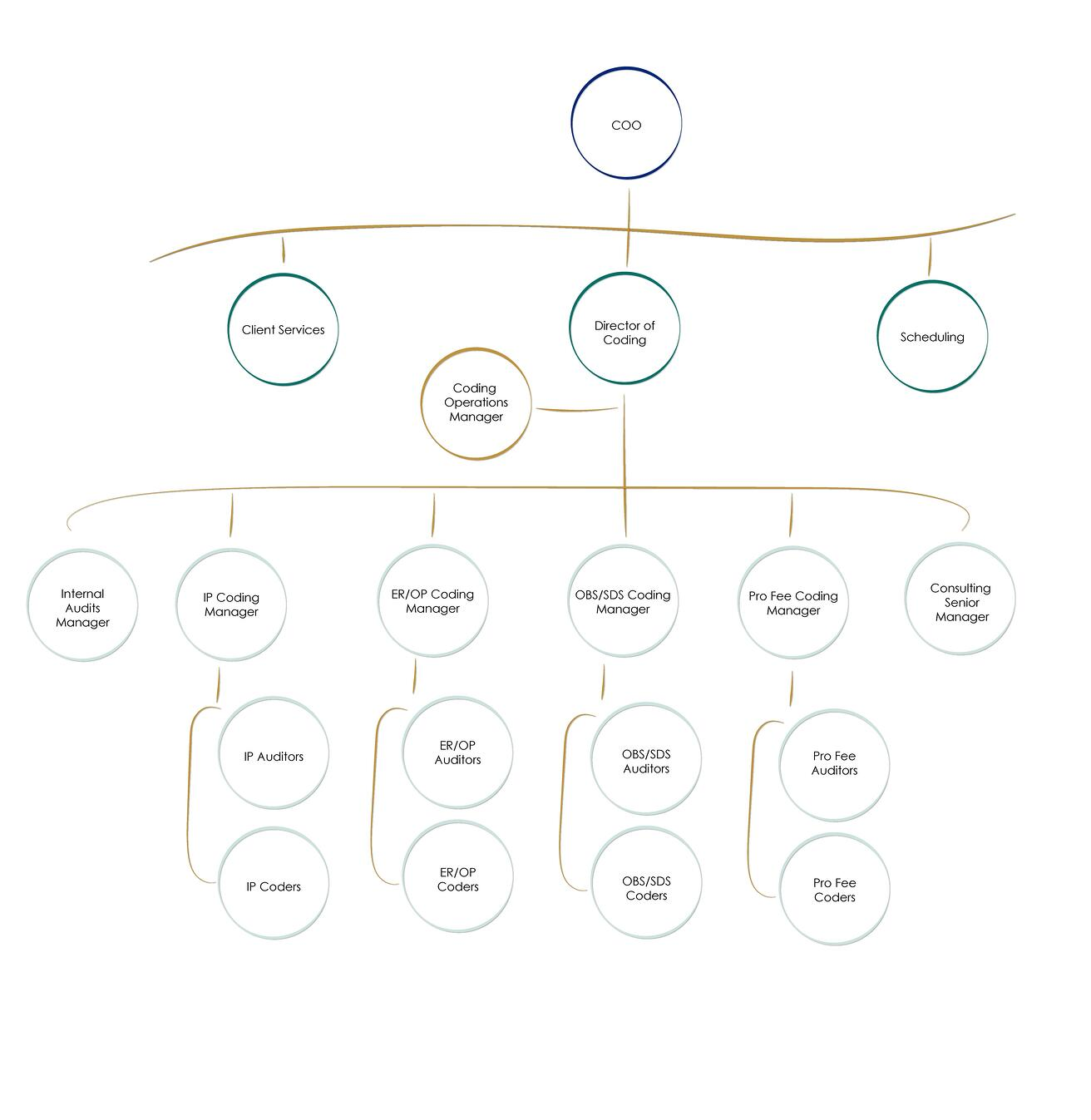coding-org-chart-website